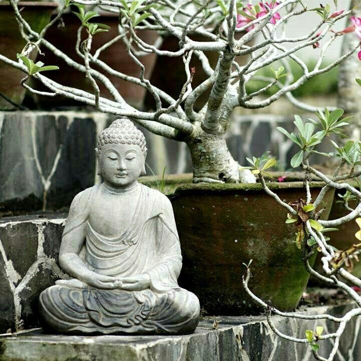 233 best images about spirit buddha on pinterest gautama buddha buddha sculpture and golden. Black Bedroom Furniture Sets. Home Design Ideas