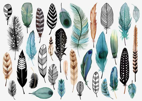 Margaret Berg Art: Teal Feathers