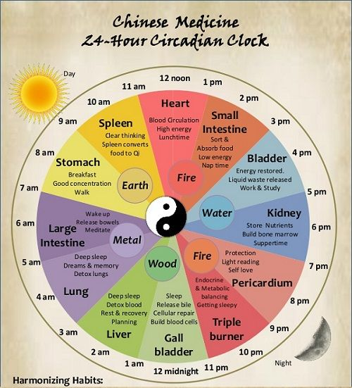 A doctor of Chinese medicine will ask his/her patient firstly in which time of day his/her body disorders appear. According to that, the doctor will know which part of the body has a health problem. The Chinese biological clock shows intervals by which energy circulates through parts of our body and every two hours in…