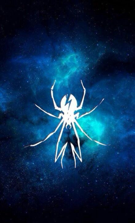 I'd love to get the spider, in black ink, very small on my ankle, to remind me not to be afraid and just because it's an amazing spider