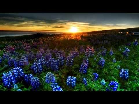 El amor de una Madre /Richard Clayderman-Chiquitita - YouTube