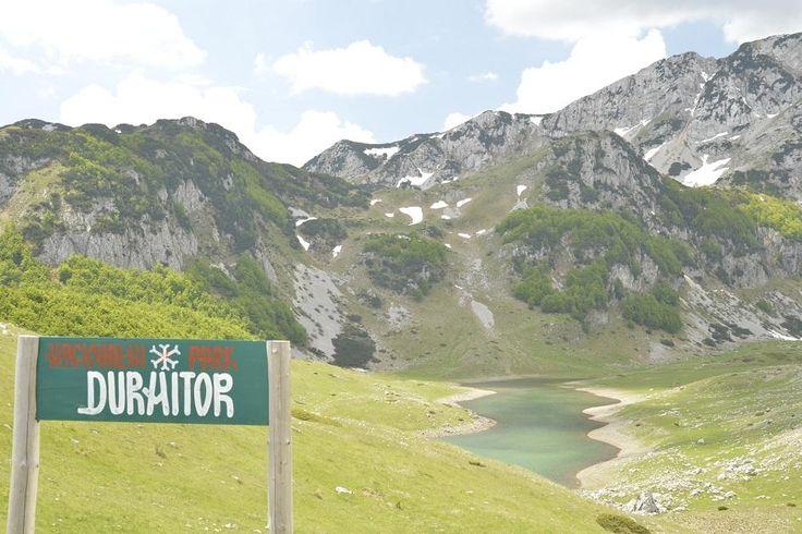 Горы, они сильнее нас... durmitor1.ru  #прогулка#дурмитор#черногория#горы#балканы#походы#туризм#альпинизм#скалолазание#долгожители#горцы#отдых#поход#горы#путешествие#путешествия#путешествуем#путешествуй#путешествовать #путешествую#турист#туристы#поездка#отпуск#отпуск2016#отдых #отдыхаем#заграница#тур#путь