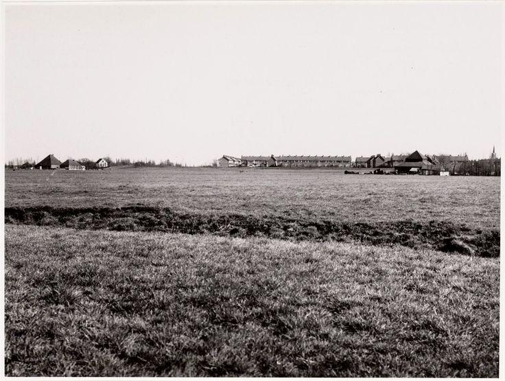 Buikslotermeerpolder 1958 Op de achtergrond het Dirkshornplantsoen. Rechts de torenspits van de Ned.Herv.Kerk op het Brede Kerkepad.