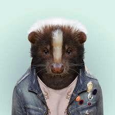 Skunk #clothes #animal #as #human #design #skunk