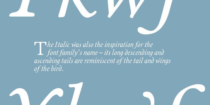Magpie (HOT font) - http://fontsdiscounts.com/magpie-hot-font/