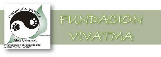 Diseño de BLOG para la FUNDACION VVIATMA. (sin servicio de administración)