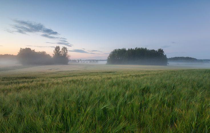 Kesä - Mikko Lönnberg Photography, Finland