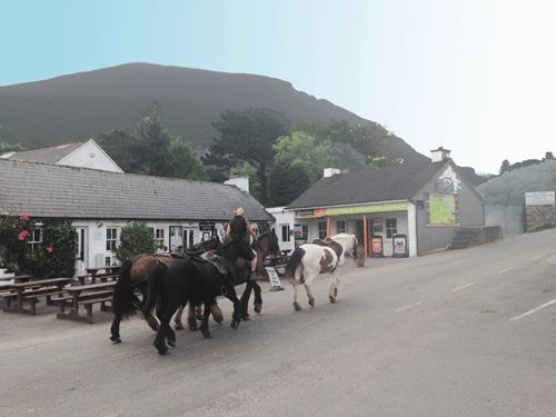 Kate Kearney's Cottage sits at the entrance to the world famous Gap of Dunloe which is an amazing mountain pass with some of Killarney's most stunning scenery. Picture by tour driver/guide Daithi Rainsford