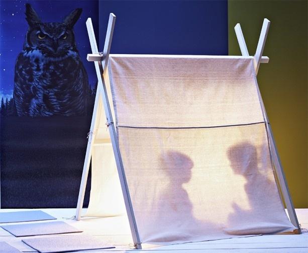 Tent: Ideas, Diy'S, For Kids, Plays Tent, Kids Tent, Indoor Tent, Pup Tent, Fun, Kids Rooms