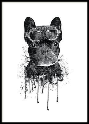 Poster / Kinderposter met moderne kunst in de vorm van een Franse bulldog. Een echt schattige en tegelijkertijd stoere illustratie die perfect is voor in de kinderkamer, maar net zo mooi is in de zoonkamer. www.desenio.nl