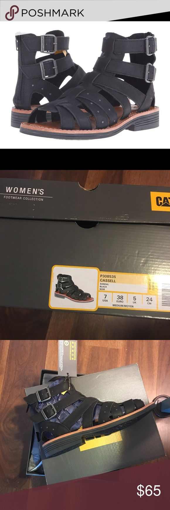 CAT FOOTWEAR Cassell Gladiator Sandal Brand New  7 CAT FOOTWEAR Cassell Gladiator Sandal Brand New Sz 7  Every day will feel like summer vacation when you're wearing the incredible style and comfort of the Caterpillar Casual® Cassell sandal. Full grain leather upper with metal stud accents on straps. Metal buckle closure at ankle for easy adjustability. Back zip closure for easy on and off. Soft microfiber lining for added comfort. Cushioned PU footbed for both comfort and support. Durable…