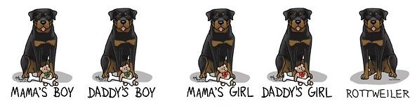cartoon rottweiler pictures | Products with these Rottweiler pictures,