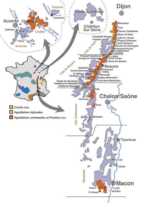 La région bourguignone - Les 5 régions