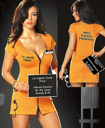 """Hard Time  Sexy Inmate Costume includes Knit Dress with Two Way Zipper and Front and Back Screenprint Detail, Removable """"Prisoner Ms. Ally Catraz"""" Badge, Handcuffs and Prisoner Booking Card."""