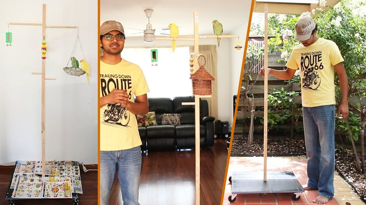 DIY Parrot stand (How to make cheap cool looking parrot's stand)
