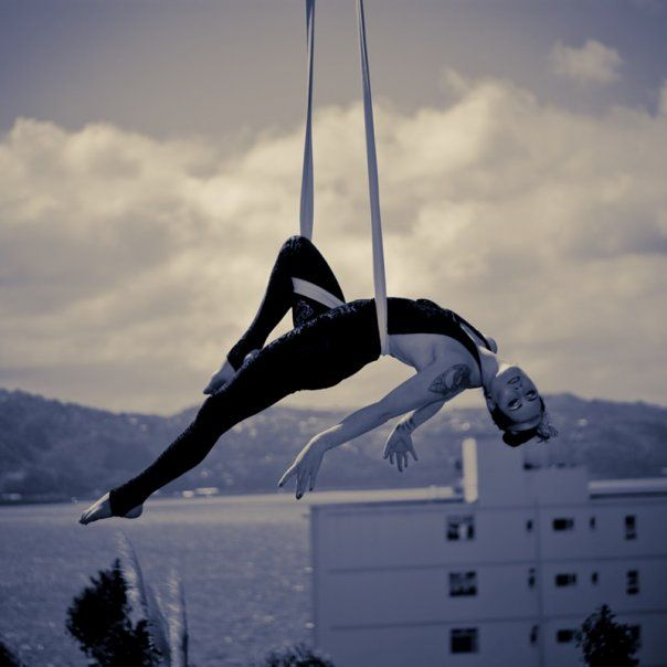 aerial performances add beauty and grace to an outdoor setting  tanya drewery swings in front of the scenic wellington harbour  177 best aerial hammock images on pinterest   aerial hammock      rh   pinterest