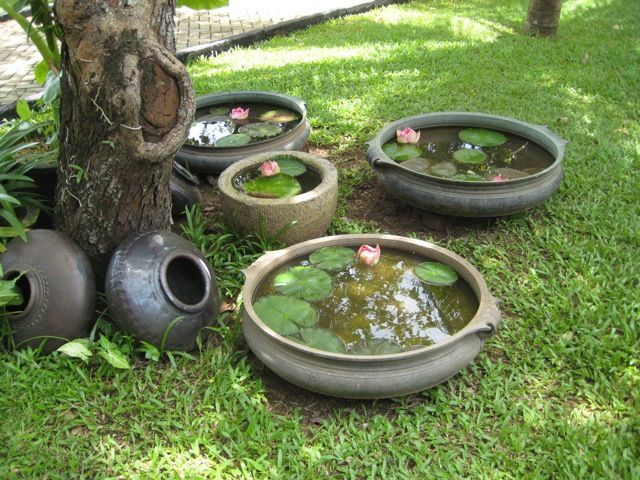 Modren Garden Design Kerala Ideas Front Idea Wpthemesnow With E For