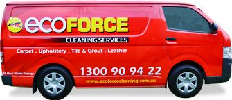 Get Professional cleaning services provider in Sydney  by Eco Force Cleaning.Our services include carpets, mattress & upholstery cleaning. For more info visit here http://www.ecoforcecleaning.com.au/