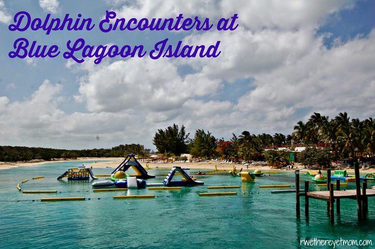Dolphin Encounters At Blue Lagoon Island Nassau Bahamas Disney We And Cruise Excursions