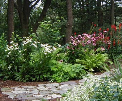 24 best rain garden designs images on pinterest rain for Native plant garden designs