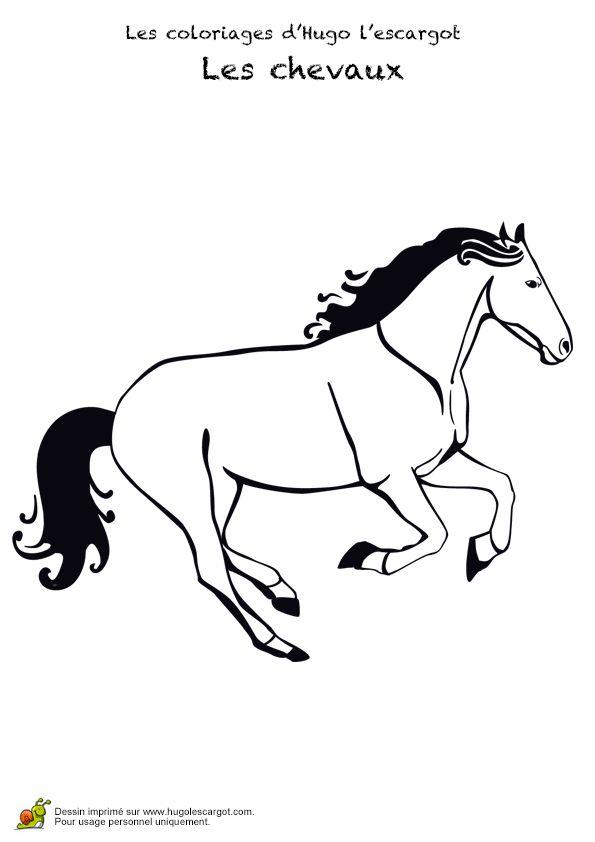 191 best images about coloriages animaux de compagnie on - Dessin cheval de course ...