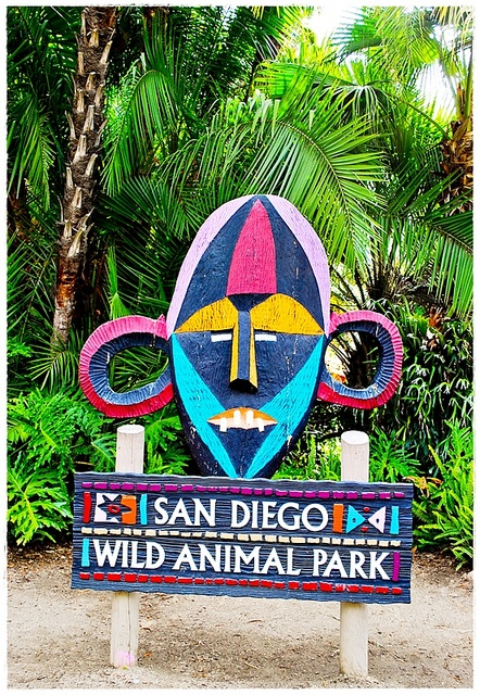 Wild Animal Park San Diego,CA ~ Amazing!!  Check out Old Town too-lots of shopping & good food!