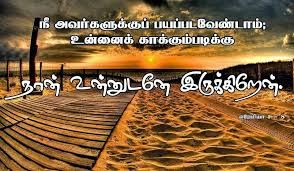 Image result for tamil holy bible