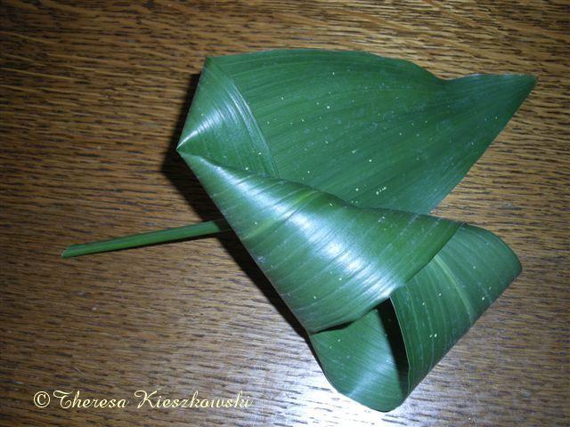 Folds of the Aspidistra leaves ~ Theresa Kieszkawski