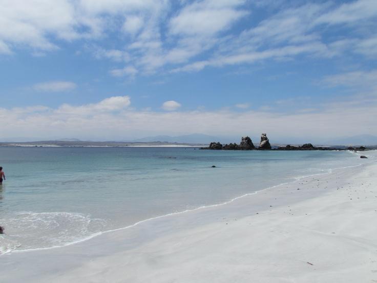 Isla Damas. Foto de Tania Muñoz.