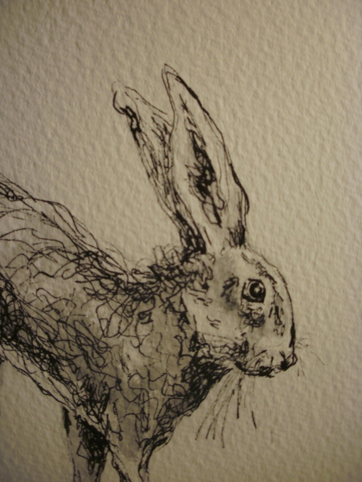 Cute pen and wash inspiration - animals   Term 1 project ideas {Original pen and wash drawing of a Hare. £40.00, via Etsy.}
