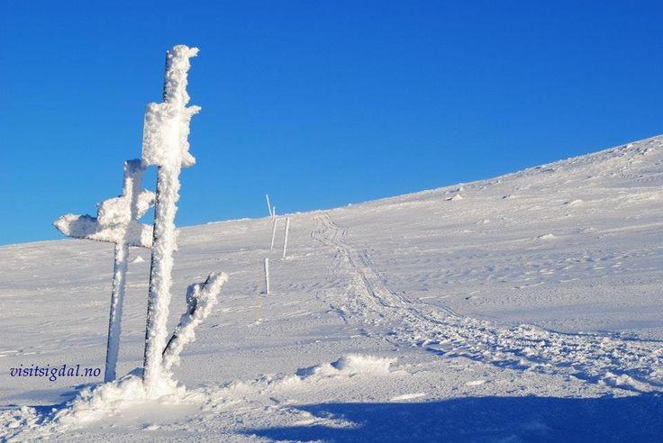 Crosscountry skiing i Eggedal Mountain, 2 hours from Oslo, Norway. Langrenn i Eggedalsfjellet, 2 timer fra Oslo.