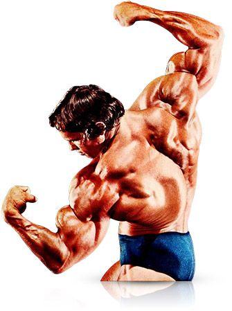 Arnold prioritized chest training; he did it first in his training when fatigue levels were low so he could train it with maximum intensity.