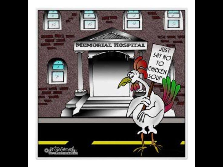 Best Chicken Jokes: 17 Best Ideas About Chicken Jokes On Pinterest