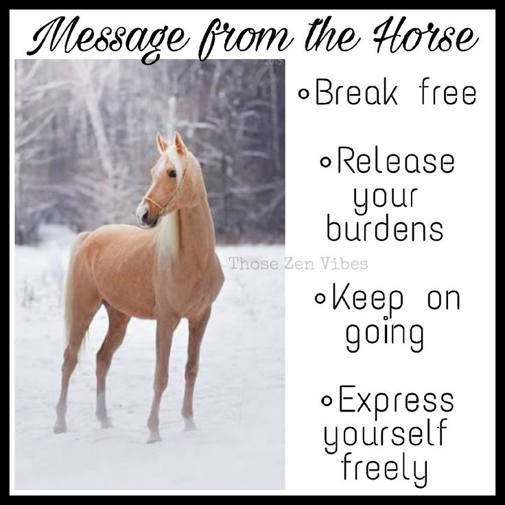 Spirit Animal Horse ~ Breaking free. Release your burdens. keep on going. express yourself freely ~ Those Zen Vibes ?? | Spirit animal ...