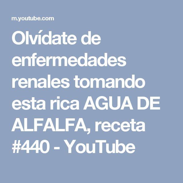 Olvídate de enfermedades renales tomando esta rica AGUA DE ALFALFA, receta #440 - YouTube