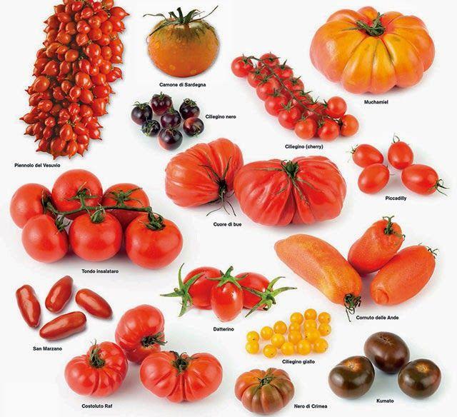 The Supreme: Come conservare i pomodori: tre modi facili