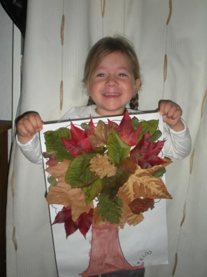 un arbre avec ses feuilles colorées