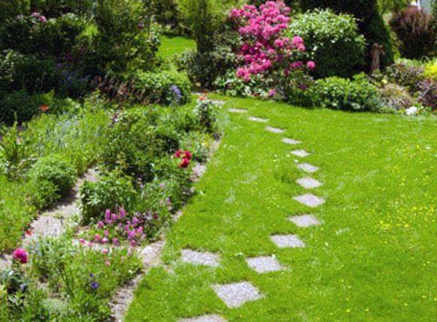 L'ESAT DOMAINE DE LA CORBINAIS prend en charge l'entretien de votre jardin (tonte de pelouses, taille de haies).