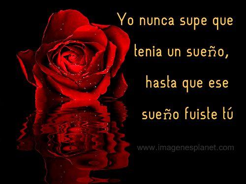 Rosas rojas animadas con movimiento y frases cortas de amor