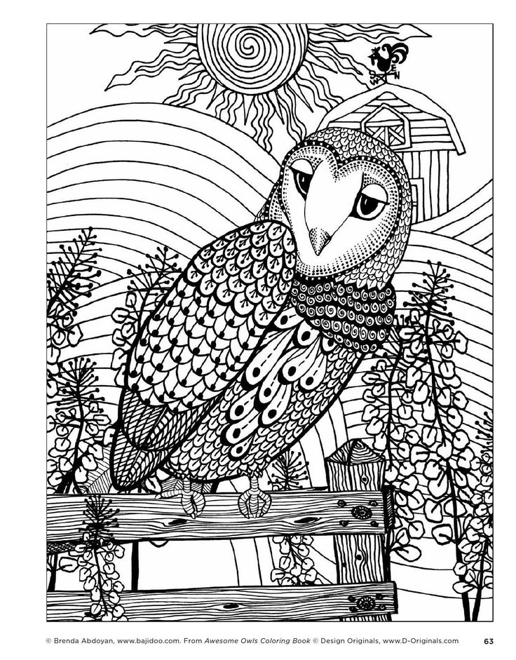 323 best Coloring pages Owls images on Pinterest Owls Adult