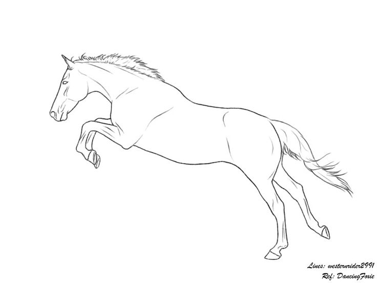 52 best Horse coloring pages images on Pinterest