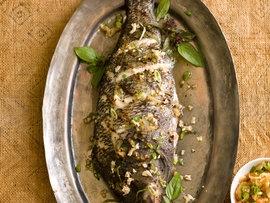 Gallatin steam plant tilapia fish recipes