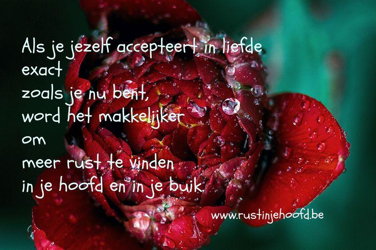 #rust #liefde #zelfliefde #rustinjehoofd #afslanken   Als je je jezelf accepteert in liefde   exact zoals je nu bent, word het makkelijker   om meer rust te vinden in je hoofd en in je buik http://www.rustinjehoofd.be/