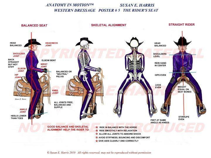Dressage in cowboy way 10