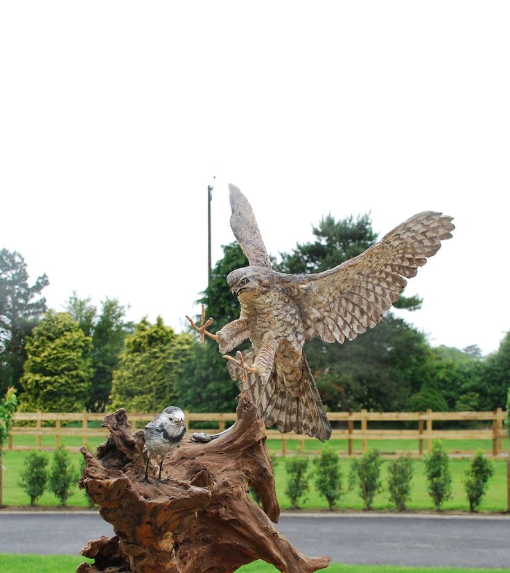 Sparrow Hawk And Pied Wagtail Wooden Sculpture