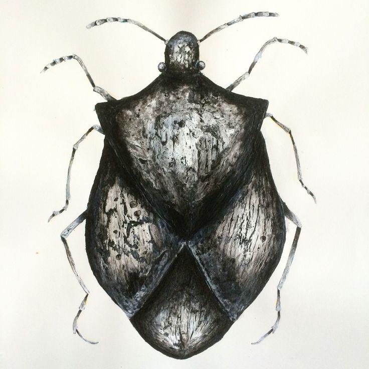 Acrylic painting, black & white bug. #art #painting #acrylic #bug
