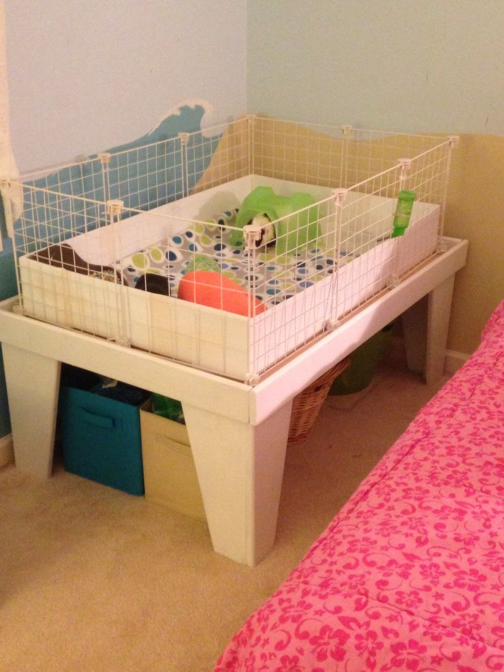 Our DIY guinea pig cage - GREAT IDEA - use train table to set C&C on!!