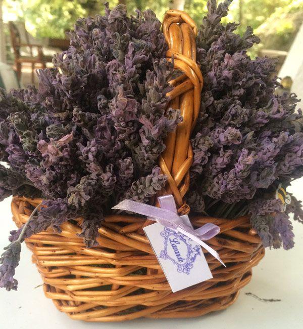 Dried Lavender flowers - Lavanda seca 03