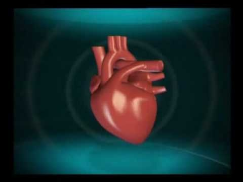 NUTRILITE Garlic Heart Care. Watch and learn how it helps.