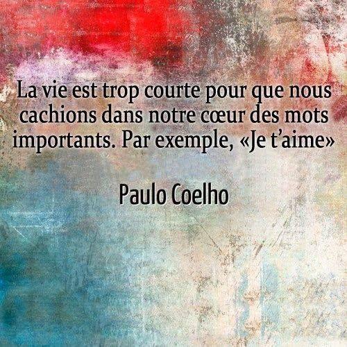 """""""La vie est trop courte pour que nous cachions dans notre cœur des mots importants. Par exemple, """"Je t'aime'"""" - [Paulo Coelho]"""